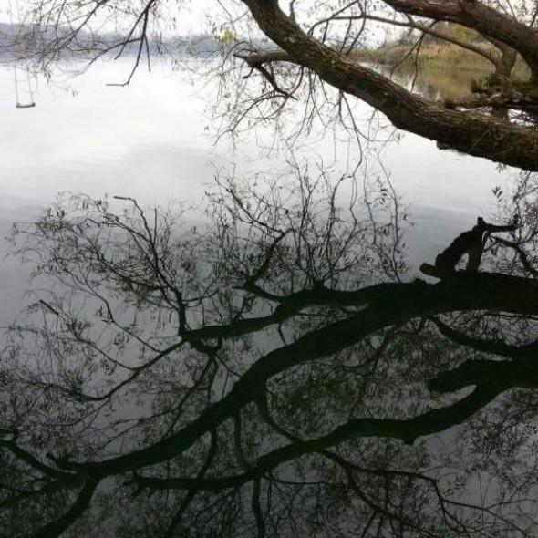 Schaukel über dem See